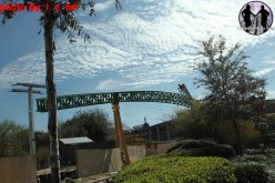 Cheetah Hunt Construction Update 1-30-11