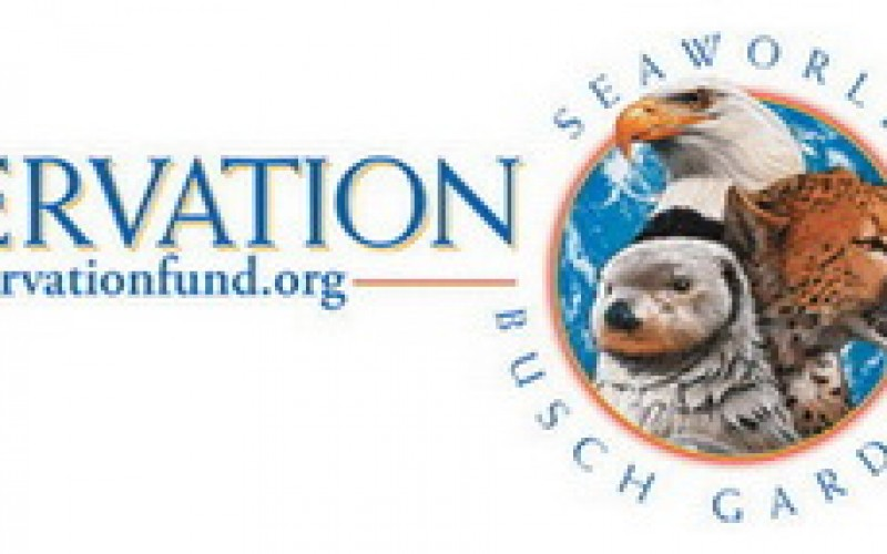 Seaworld And Busch Gardens Conservation Fund Donate $1 Million To Help  Animals In Need