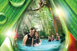 Trip Advisor to stop bookings for animal attractions, including Discovery Cove