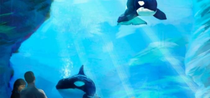 California Coastal Commission votes on SeaWorld's Blue Ocean project
