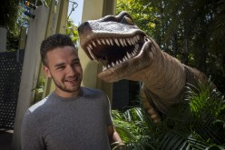 Liam from One Direction trains raptors at Universal Orlando