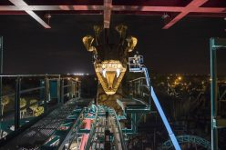 Busch Gardens Tampa's latest coaster will cater to your fears