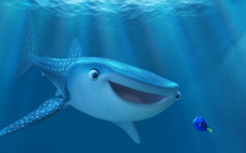 Finding Dory, SeaWorld and the very mixed message about animals