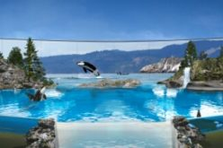 Virgin Holidays to keep selling SeaWorld Orlando tickets, not other animal attractions