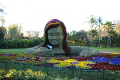 "Putting the ""gardens"" back in Busch Gardens Tampa-A look at the topiary of the Food & Wine Festival"