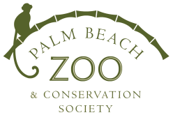 Trainer killed at Palm Beach zoo after Tiger attack