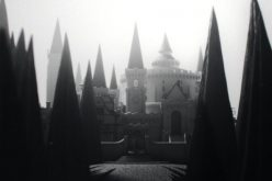 What Ilvermorny house do you belong to? New Wizarding World story beings American wizards to life