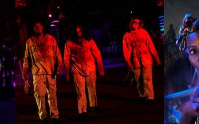 Behind The Thrills Audition For Howl O Scream At Busch Gardens Tampa
