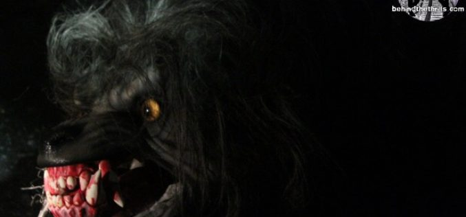 An American Werewolf in London is getting a remake!