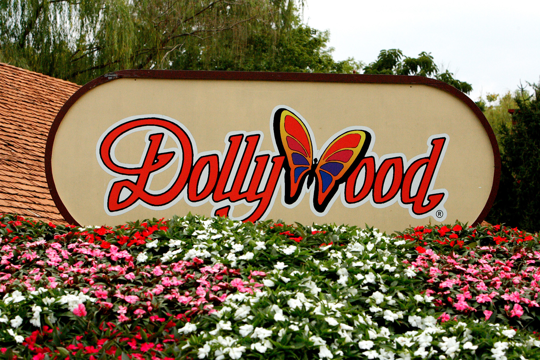 Behind The Thrills Dollywood Evacuated Due To Tennessee