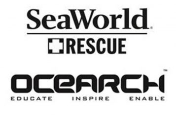 SeaWorld and Ocearch join forces to bring more protection to oceans