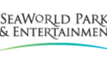 Leadership changes announced at SeaWorld as 2017 reports show More decline